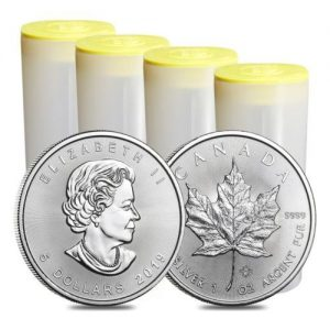 What to look out for when buying Silver Maples
